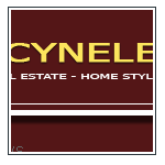 Cynele theme from FS Templates